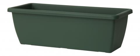 gardenie plant box green