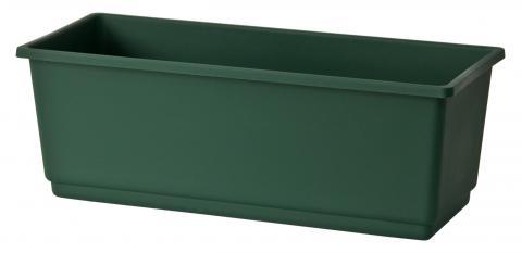 gerani cassetta verde