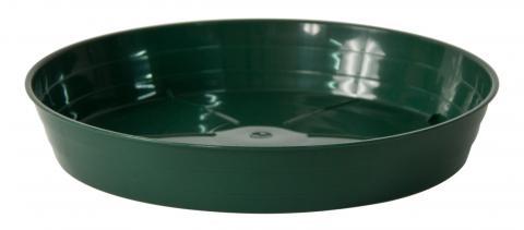 moplen plato verde