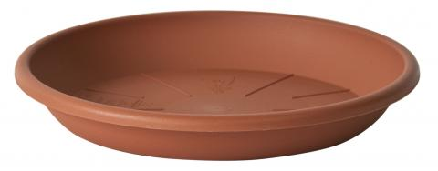 medea s/vaso terracotta