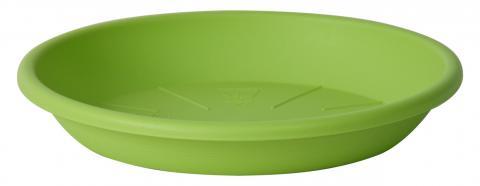 medea plato verde acido