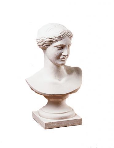 venere busto bianco