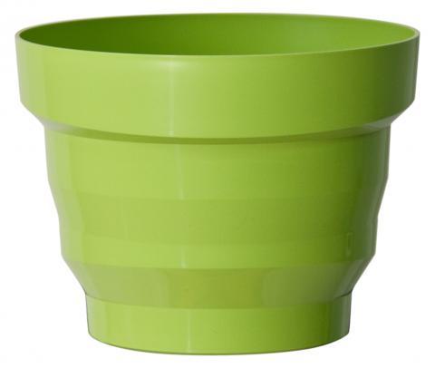 vertigo vaso verde acido