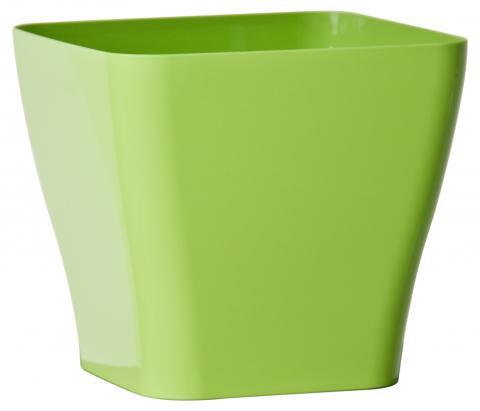 quadria vaso verde acido