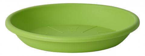 medea saucer acid green