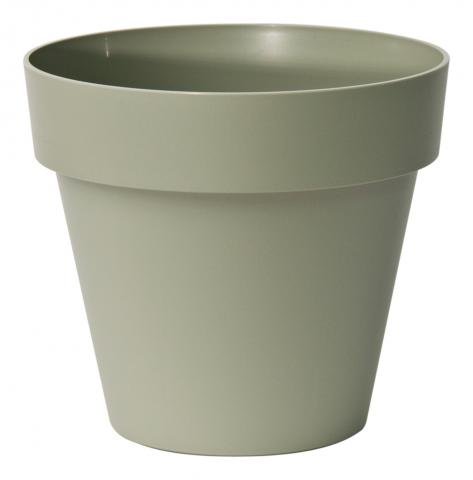 mitu pot with holes rosemary
