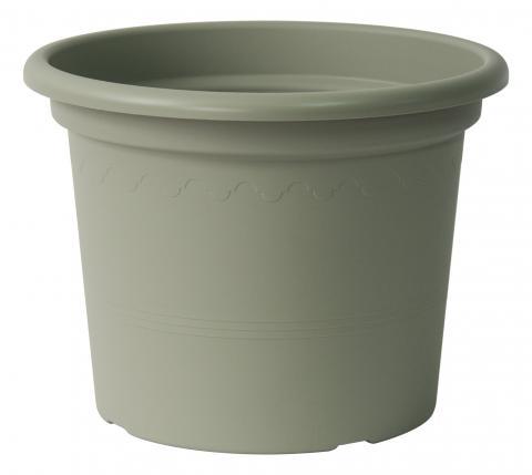 geo vaso rosmarino