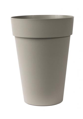 liken vaso sabbia