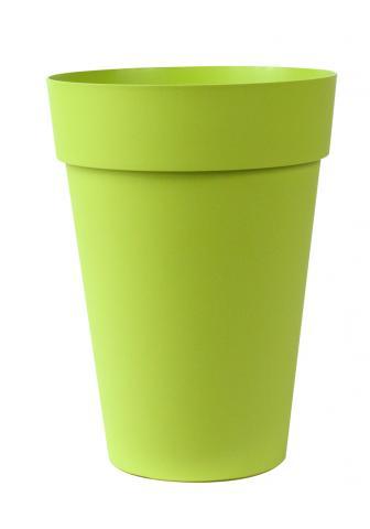 liken vaso verde acido