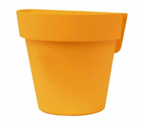 up vaso mango