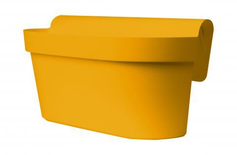 up cassetta mango